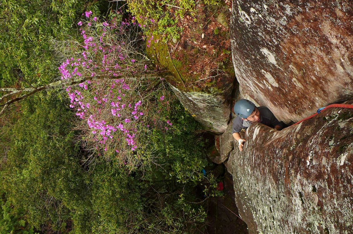 Climbing 5.9 on a recent trip to Nabari, Japan.